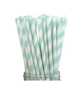 24 Mint Green Striped Paper Straws