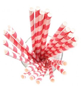 24 Red Striped Paper Straws