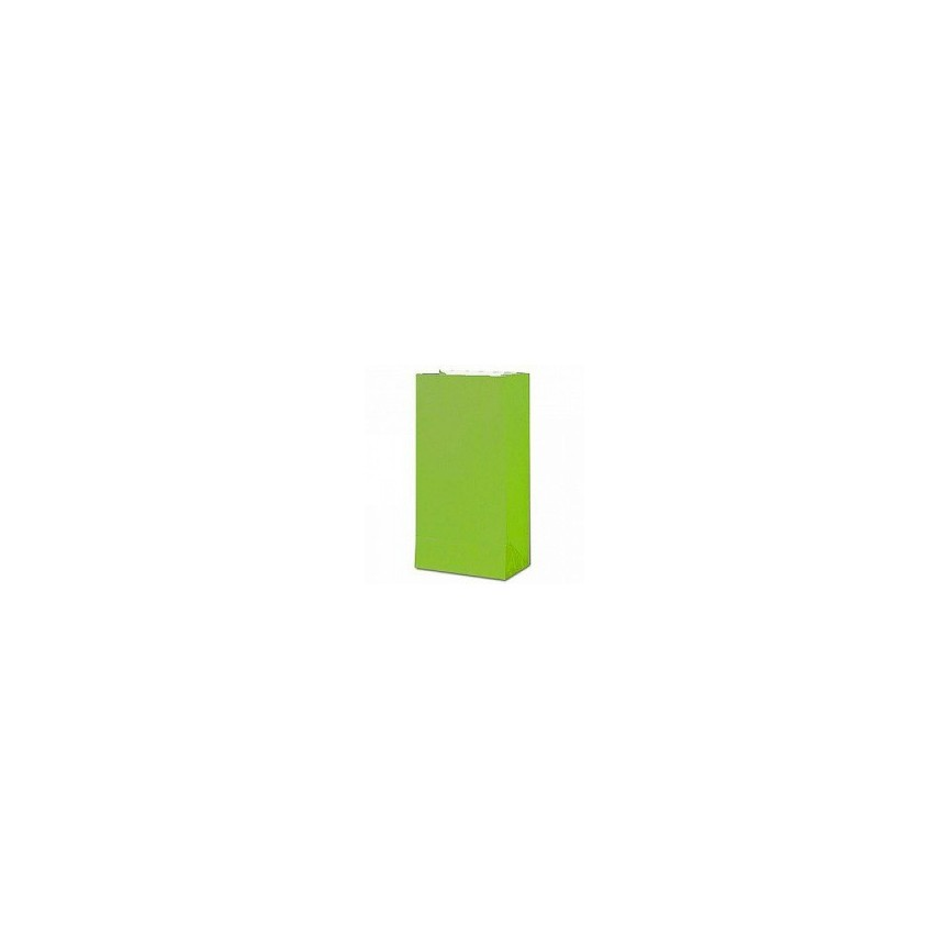 12 Lime Paper Party Bags