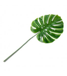 1 Tropical Leaf