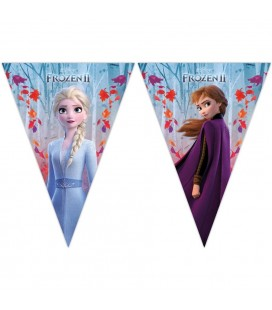 Tringle Flag Banner Frozen 2
