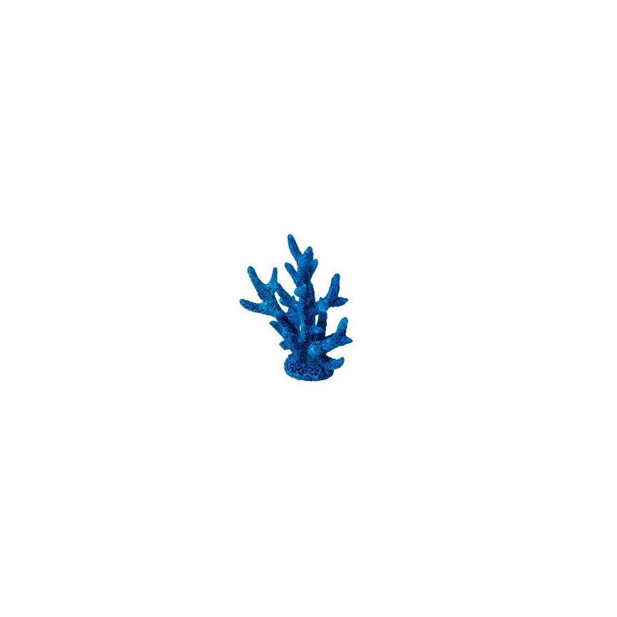 2 Blue Coral Place Card Holder
