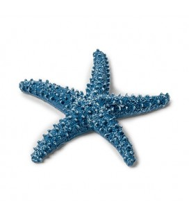 1 Blue Starfish