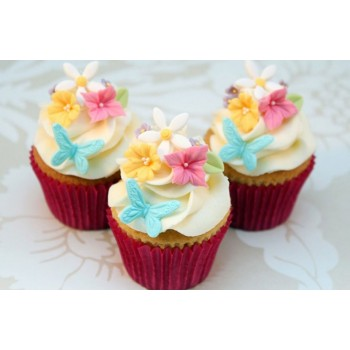 Cupcake & Muffin Cases/Liners/Cups